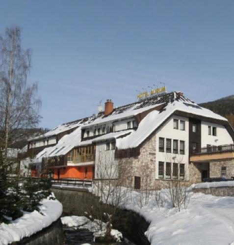 Foto - Alloggiamento in Černý Důl - Hotel Aurum - Hotel for families